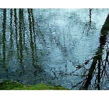 All Things of Nature Photographic Print