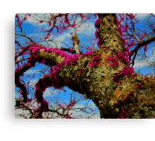 THIS IS FANTACY! Canvas Print