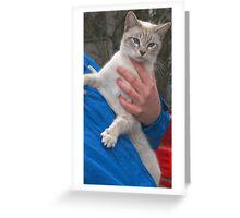 Green Paw Greeting Card