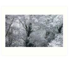 jack frost Art Print