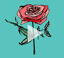 //Roses// by Back To 1974