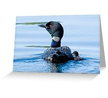Adult Loon and Baby - Mississippi Lake, Ontario Greeting Card
