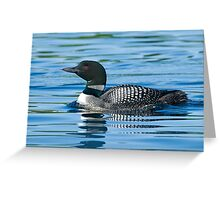 Common Loon - Mississippi Lake, Ontario Greeting Card