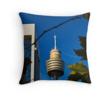 Sydney - A Different Perspective Throw Pillow