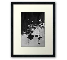 Sacred Balance Framed Print