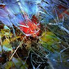 shattered abstract by Doria Fochi