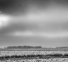 Winter In Farm Country by Thomas Young