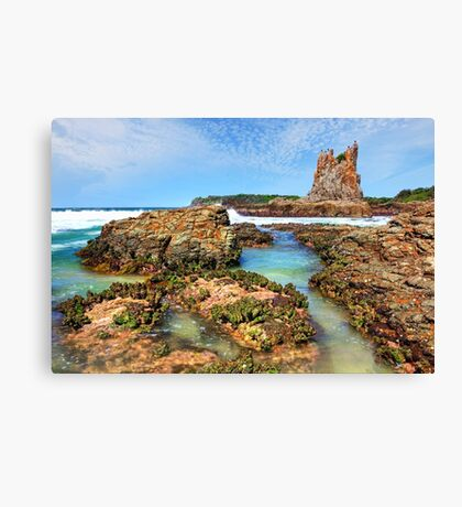 Cathedral Rocks Kiama Downs Australia seascape Canvas Print