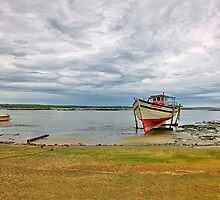 Malvan Harbor #1 by Prasad