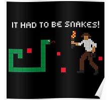 It Had to be Snakes! Poster