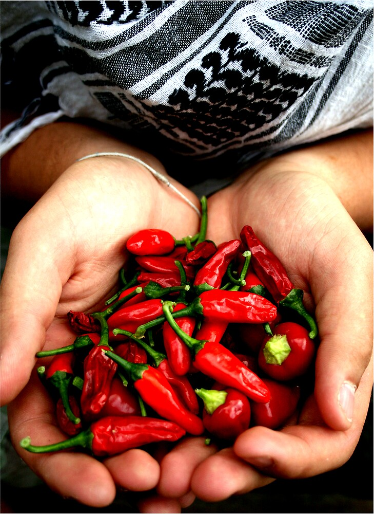 spicy by misskate