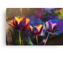 The Colour Memories Canvas Print