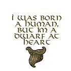 Born human but Dwarf at heart by bronzestout