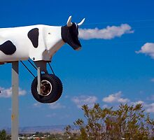 Cow Power by Skip Hunt