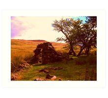 Snowdon cottage Art Print