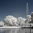 Washington Monument (Infrared) by Vicky Hamilton