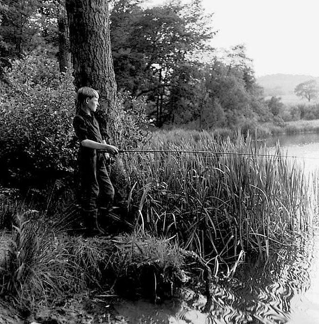 Angler by david malcolmson