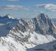 Colorado Rockies from Above by Vicky Hamilton
