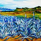 Jose's Agave by WhiteDove Studio kj gordon