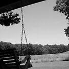 Swing, swing... by Jayca