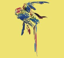Parrots by Diana Symes
