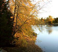 Lake shore in autumn by AndrewBlake