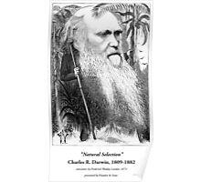 Charles Darwin Caricature 1873 Poster