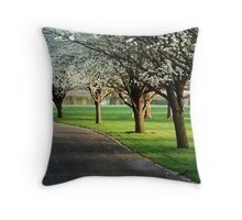 Bradford pears in bloom Throw Pillow