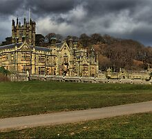 margam castle 2 by zacco