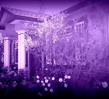 Vera's Hideaway, purple by michaelina