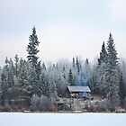 Canadian Winter by kitkat55555