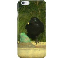 Crow with a piece of bread iPhone Case/Skin