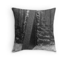 Water over the spillway Throw Pillow