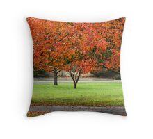 Bradford pears in autumn Throw Pillow