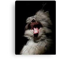 This is so boring! Canvas Print