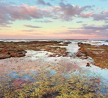 Pink sunset at Vincentia NSW Australia seascape landscape by Leah-Anne Thompson