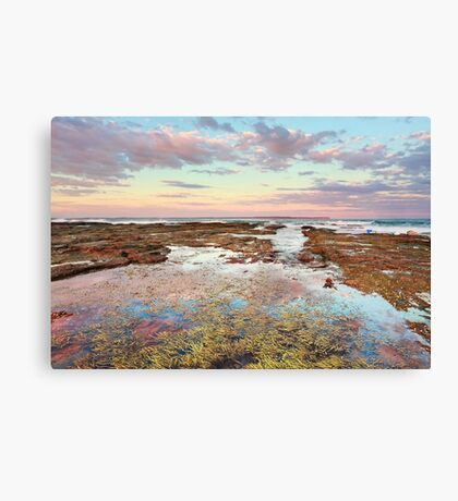 Pink sunset at Vincentia NSW Australia seascape landscape Canvas Print