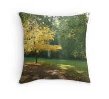 Wesonbirt Arboretum Throw Pillow