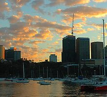 Dawn Light - Sydney Harbour, Sydney Australia by Philip Johnson