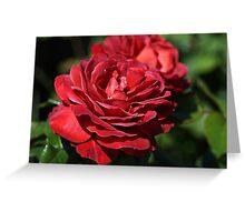 Wonderfully Red Roses Greeting Card