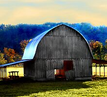 Arkansas Charmer by Lisa G. Putman