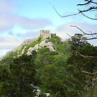 Castelo dos Mouros, Sintra, Portugal by acespace
