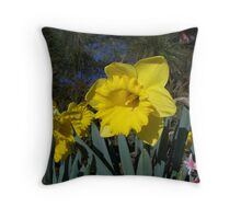 Daffy Throw Pillow