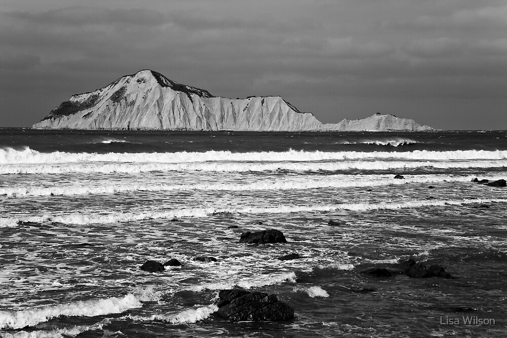 Bare Island by Lisa Wilson
