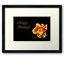 Red & Yellow Tulip ~ Happy Birthday Framed Print
