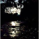 Delatite river Nightime by bettyb