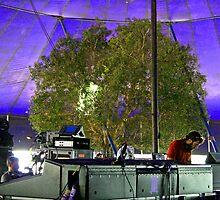Trees love music too.......... by bribiedamo