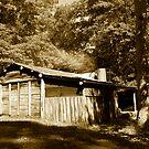 Pickerings Hut by bettyb