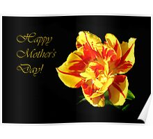 Red & Yellow Tulip ~ For Mom Poster