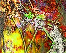Fall Explosion by Mary Campbell